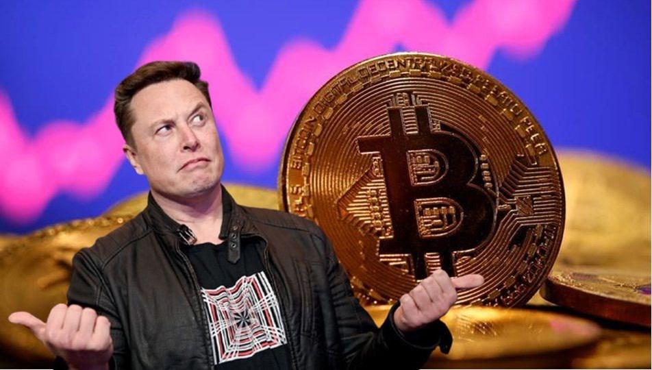 Elon Musk'tan Cardano, Ethereum ve IOTA açıklaması