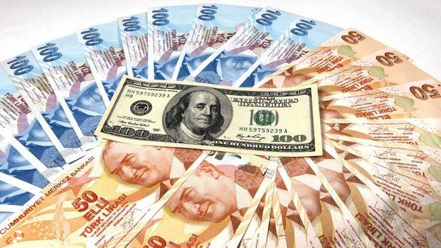 Türk lirasında güçlenen dolar baskısı