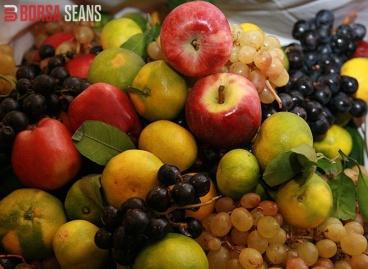 Türkiye'nin yaş meyve sebze ihracatında artış eğilimi sürüyor